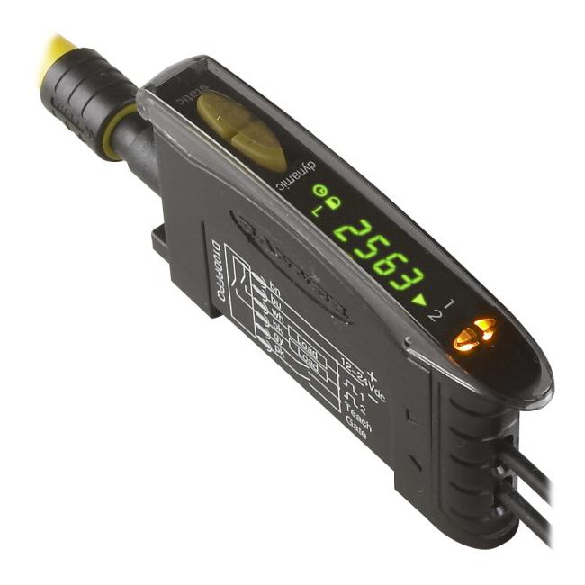 D10DPFPG W/30
